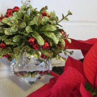 Mistletoe and Poinsettia